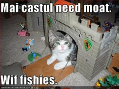 funny-pictures-cat-wants-moat